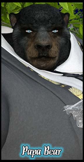 Papa Bear Classic